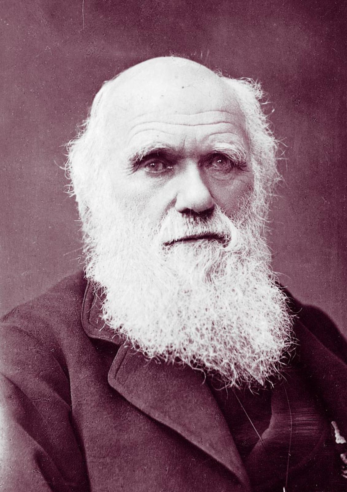 Резултат с изображение за charles darwin